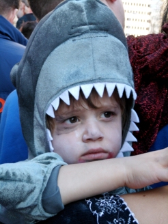 Wee zombie shark at the 2011 Denver Zombie Crawl